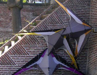 Sold/Gone Kites